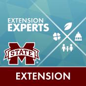 MSU-E Experts Directory App Icon